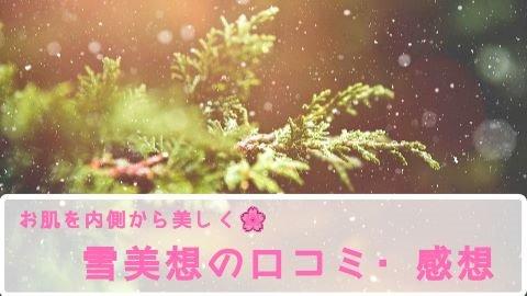 飲む肌荒れ改善サプリ『雪美想』の口コミ・感想は?【定期コース解約など】