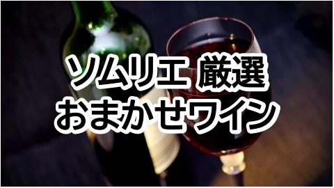2本で1,800円!ソムリエ厳選おまかせワイン【安くて美味しい】